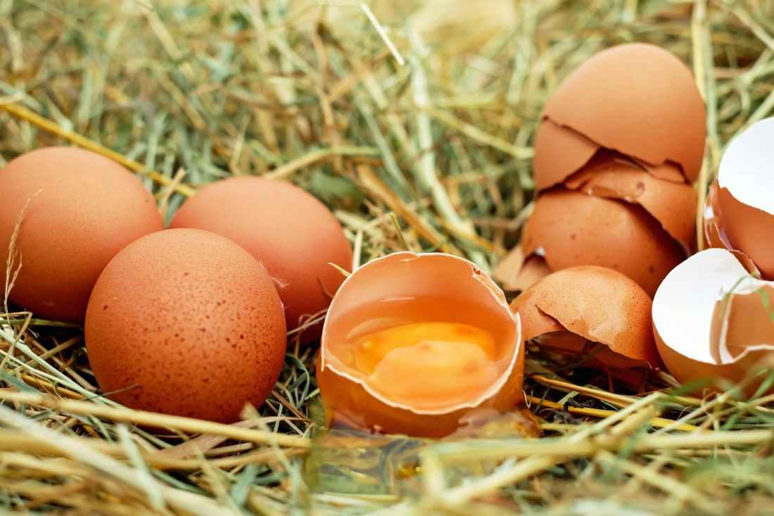 egg-chicken-eggs-raw-eggs-eggshell-128885.jpeg